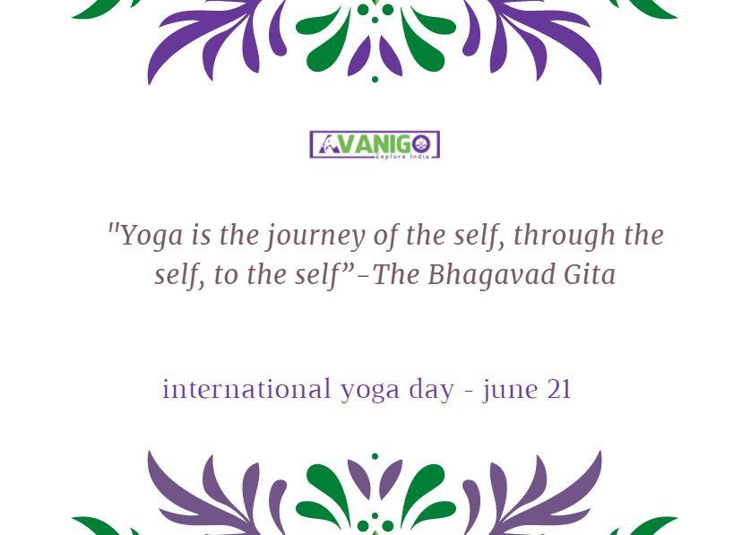 Yoga Motivation Quotes: International Yoga Day