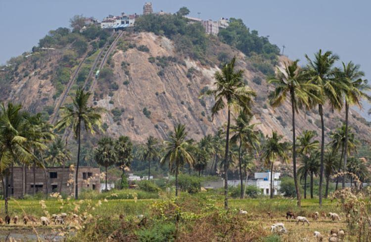 Palani Temple, Tamilnadu